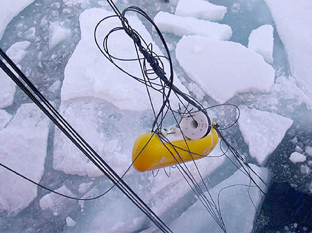A particularly nasty entanglement of 9 wire rope segments during the recovery of the MMP on mooring C. Amazingly, the instrument was undamaged.