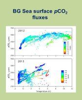 BG Sea Surface
