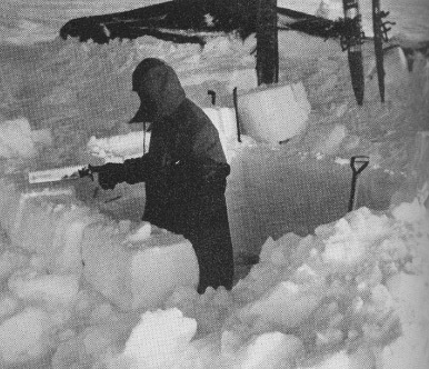 Saw and shovel build a house of snow blocks to shut out icy winds.