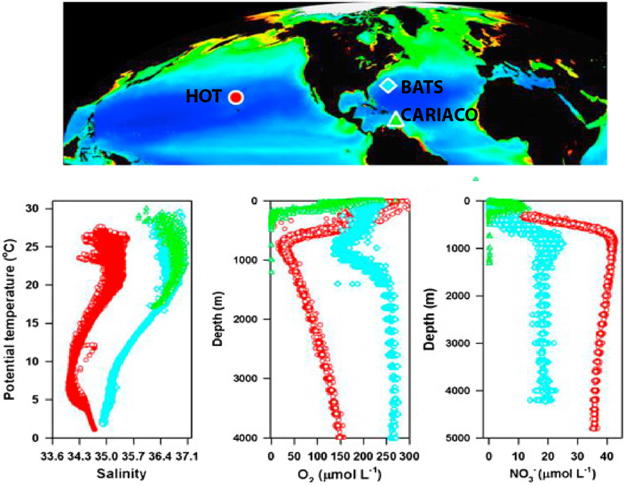 Study locations of HOT (red circle), BATS (blue diamond), and CARIACO (green triangle) superimposed over 6-year composite of satellite-derived near-surface ocean chlorophyll concentrations.