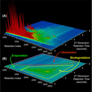Two-dimensional gas chromatograms