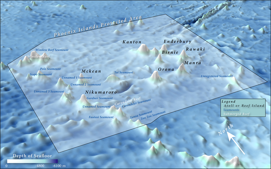Coral reef islands and seamounts
