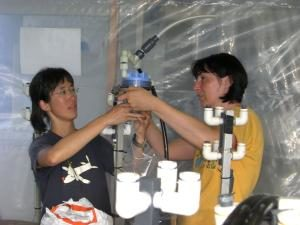 People doing an experiment