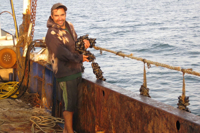 mussel farming