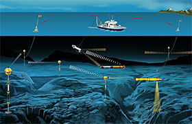Networks of fixed and mobile platforms, some associated with existing subsea infrastructure, can provide continuous, long-term monitoring of marine environmental conditions. Principal Engineers (Woods Hole Oceanographic Institution)