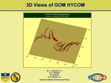 3D Views of GOM HYCOM