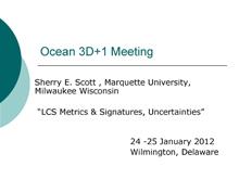 Ocean 3D+1 Meeting