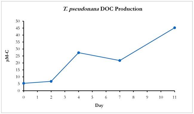 DOC Production