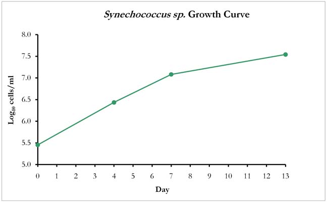 Synechococcus sp. Growth Curve