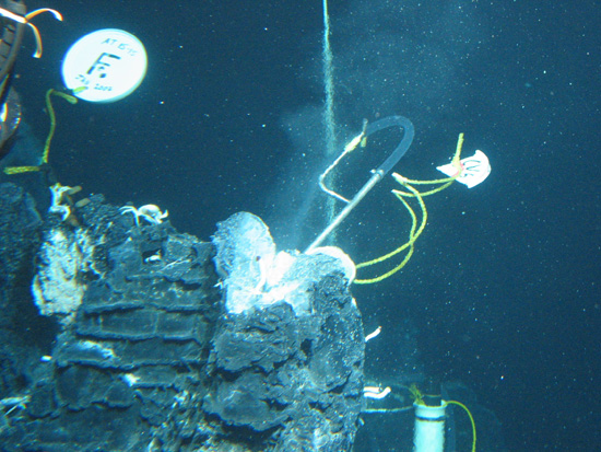 Sampling of hydrothermal fluids at 'Crab Spa' in 2007