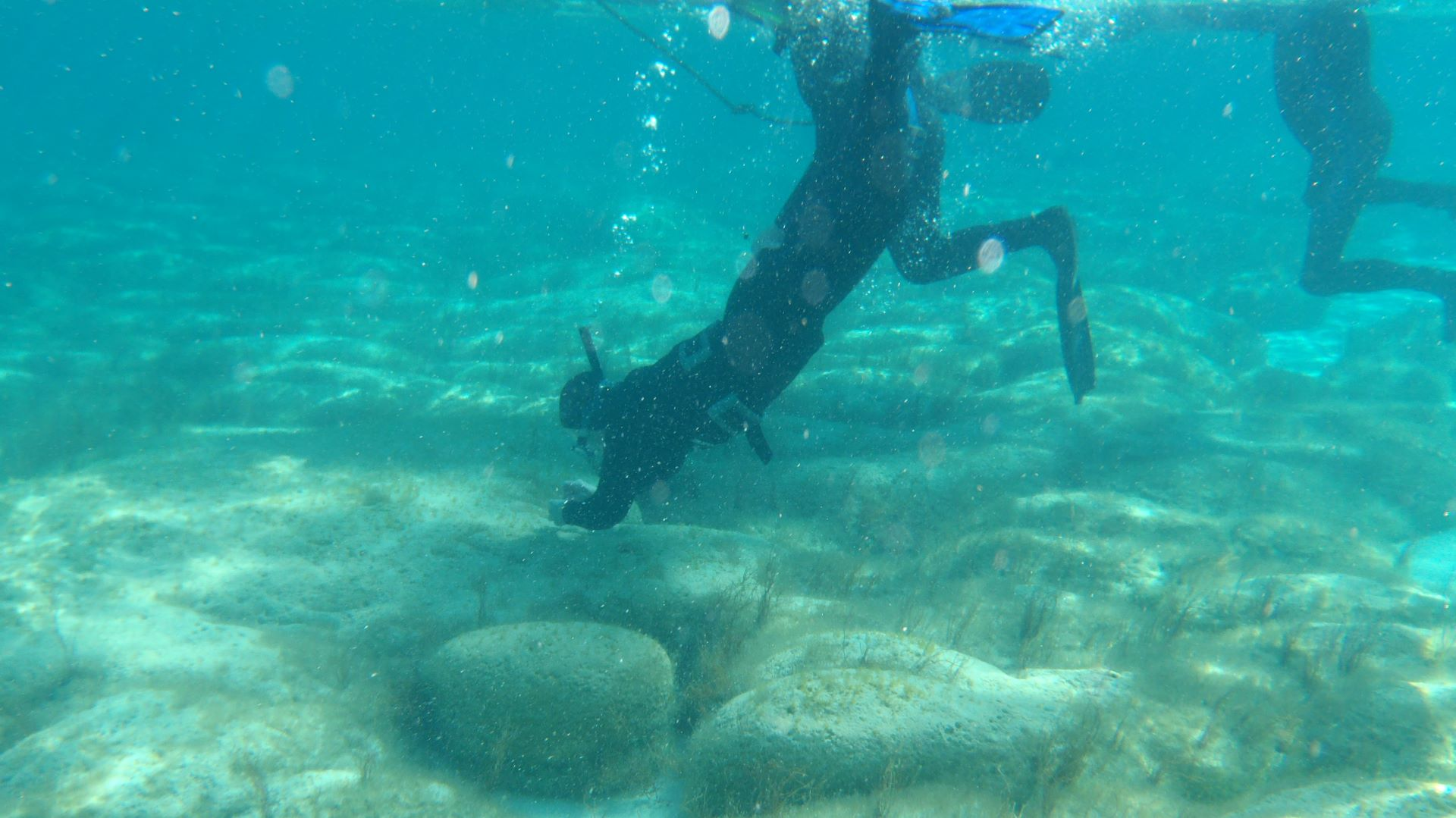 Snorkel Shark Bay