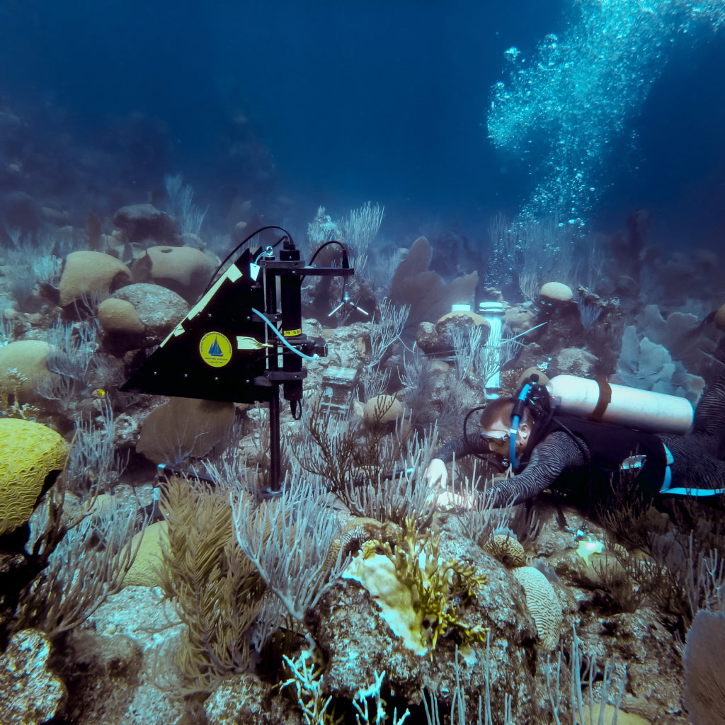 Instrument deployment on a Bermuda coral reef